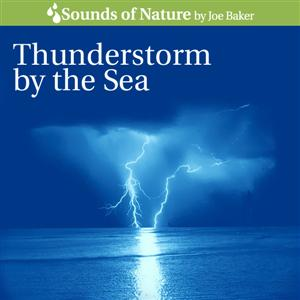 Thunderstorm by the Sea CD Cover